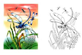 Small Picture Dragonflies coloring page Free Printable Coloring Pages