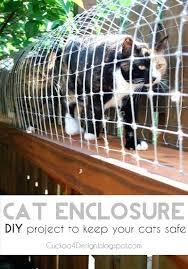 cat enclosure indoor outdoor cat enclosure to keep your indoor cats safe cat cages indoor uk cat enclosure indoor