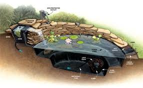 Small Picture Build garden pond a water garden design options Interior