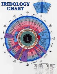 Understanding Iridology