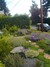 Small Picture 25 best Drought tolerant garden ideas on Pinterest Drought