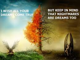 Wish Your Dream Come True Quotes