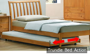 What is a Trundle Bed Frances Hunt