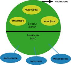 Лекция Предмет на екологията Основни понятия Реферат от  Биосфера включва долния слой на атмосферата най горния слой на лито и хидросферата