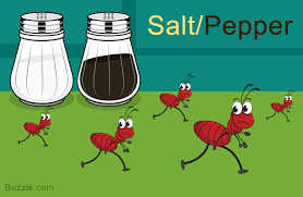 home remes to get rid of ants salt and pepper