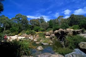 rock garden at the australian national botanic gardens