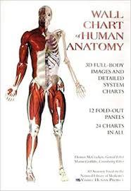 Whole Body Chart Amazon Com Wall Chart Of Human Anatomy 9780971007000