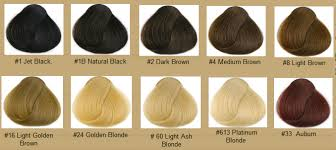 Color Royale Hair Colour Chart Different Types Of Semi Permanent Hair Color Photo Ideas