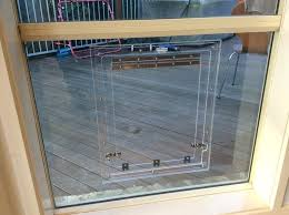 glass dog doors dog door glass images accordion style doors glass pet doors canberra