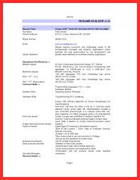 Resume Usa Template Good Resume Format