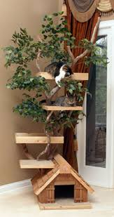 Amazing Outdoor Cat Climbing Trees whisker city cat furniture