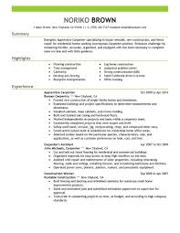 Apprentice Carpenter Resume Sample Carpenter Resumes Livecareer