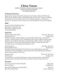 Escort Resume Beauteous Best Escort Resumes ResumeHelp