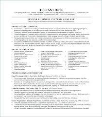 Entry Level Job Resume Examples Analyst Resume Examples Administrativelawjudge Info