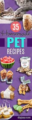healthy homemade diet food. 35 homemade pet recipes your dogs and cats will beg for healthy diet food s