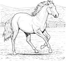 Beautiful images of horses and ponies to print and color. Free Printable Horse Coloring Pages For Kids