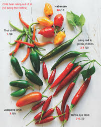 Sydney Markets Some Like It Hot Know Your Chillies And