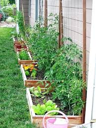 potted vegetable garden how to make a balcony vegetable garden tips for starting an edible container