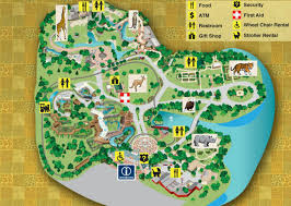 empty zoo map. Modren Map Picture With Empty Zoo Map