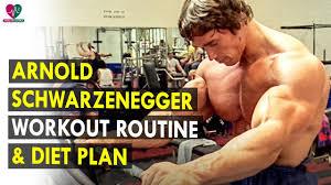 arnold schwarzenegger workout routine t plan health sutra best health tips