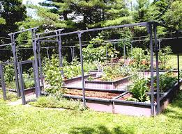 Small Picture Beautiful Vegetable Garden Ideas Pinterest Pictures Home