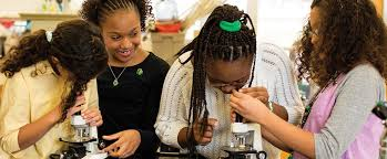 Stem - Girl Scouts