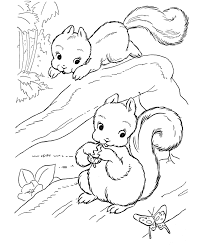 Small Picture Playful Squirrels Coloring Pages Squirrel Coloring Page And Kids
