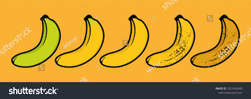 Banana Ripeness Chart Set Different Color Stock Vector