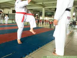 image titled find a good martial arts instructor step 6 martial arts instructor jobs