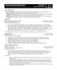 Business Analyst Resume Amazing It Business Analyst Resume Swarnimabharathorg