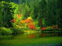 Beautiful Pictures Of Nature Beautiful Nature Wallpapers 25 Photos Funmagorg