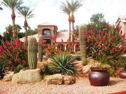 Small Picture The 25 best Arizona landscaping ideas on Pinterest Desert