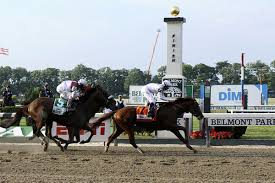 2013 Belmont Stakes Results Chart 2010 Belmont Stakes Race Re Cap And Down The Stretch They