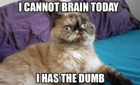 I has the dumb....I have been feeling sluggish and sleepy all ... via Relatably.com