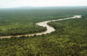 Реки Африки Гамбия