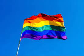 When Is Pride Month & How Did It Begin? | Gay Pride History, 2021 Events