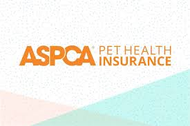 Travelers insurance reviews and ratings. Aspca Pet Insurance Review