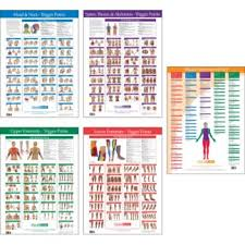 Joint Range Of Motion Muscle Movement Chart Kent Health