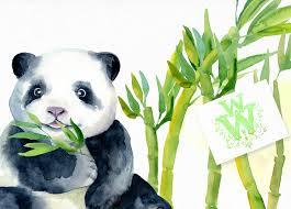 watercolor baby panda bear clipart bamboo cute animal art example image 5