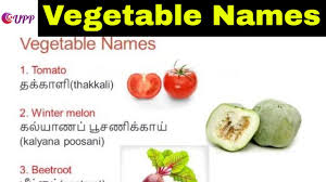 indian vegetables names in english with pictures.  Indian Learn Tamil Through English  Vegetable Names And Indian Vegetables In With Pictures E