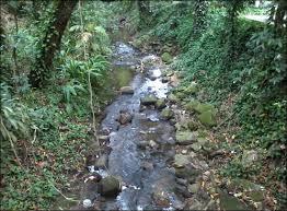 Resultado de imagem para rio carioca