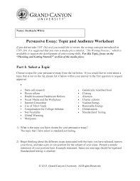 health insurance essay joy persuasive essay topicand audience worksheet 7 10 17