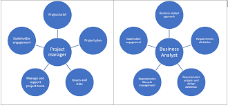 Business Analyst And Project Manager Collaboration | Business Bullet