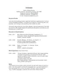 A Good Summary For A Resumes A Good Example Of A Resume Resume Examples Summary Example Good With
