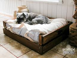 dog laying in diy pet bed by prodigal pieces prodigalpieces cm