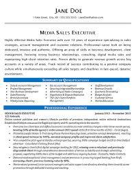 Summary Resume Example Media Sales Resume Example