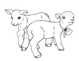 Small Picture Lamb Coloring Page Alric Coloring Pages