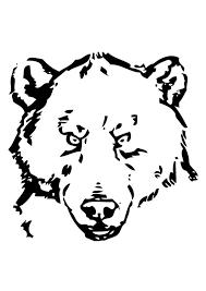 Disegno Da Colorare Testa Di Orso Cat 19387 Images