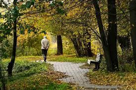 Психология людей пожилого возраста основные проблемы особености Психология пожилых людей основные возникающие проблемы
