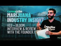 Veg Bloom Ro Soft Feed Chart Marijuana Industry Insight Episode 7 Veg Bloom Nutrients Interview Review With Founder
